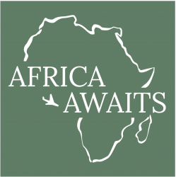 Africa Awaits