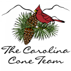 Carolina Cone Team/Keller Williams Realty